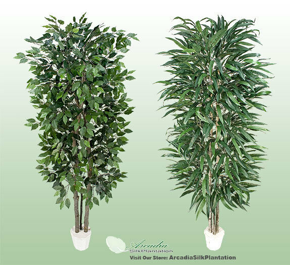 2 Potted 7' Real Wood Artificial Trees Ficus + Wp Ficus