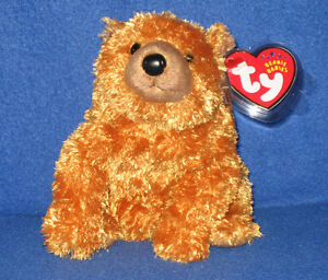 TY SEQUOIA the BEAR BEANIE BABY - MINT with MINT TAGS