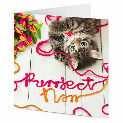 PURRFECT NAN cat kitten playing with wool gran mother's day birthday card