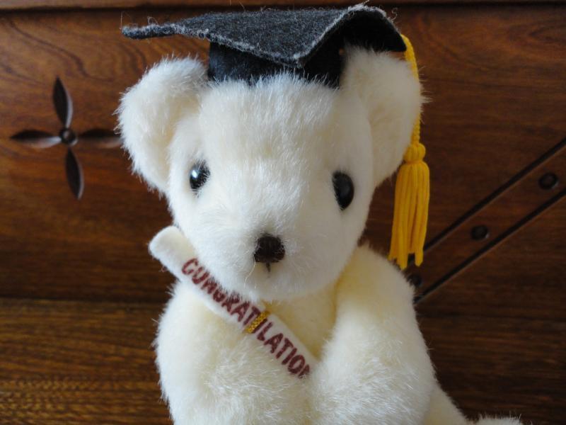 Russ Berrie Graduation Bear Congratulation Diploma & Cap