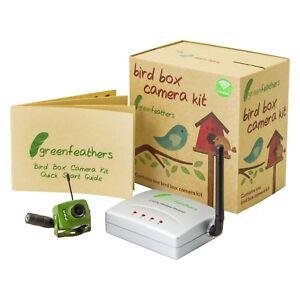 Vert Plumes Oiseau Boite Caméra Récepteur Sans Fil Kit Avec Vision De Nuit-afficher Le Titre D'origine