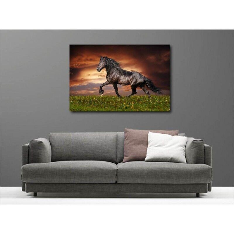 Canvas Fabric Deco Rectangle Horse 114050824