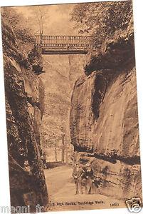 Koenigreich-Uni-High-Rocks-Tunbridge