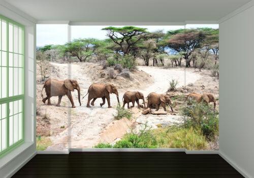 3D Elephant Team 726 Wall Paper Wall Print Decal Wall Deco Indoor AJ Wall Paper