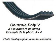 Courroie Poly V 559J4 pour machine Lurem