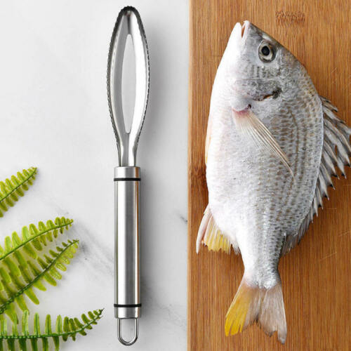 Stainless Steel Fish Scraping Scale Shaver Kitchen Brush Cleaning Tool