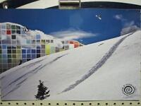 Volcom Snowboard Skateboard 2009 Tyler Flanagan Poster Mint Condition