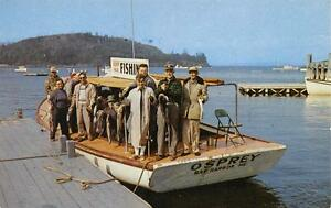 THE-OSPREY-Frenchman-039-s-Bay-Boating-Co-Bar-Harbor-Maine-Fishing-Boat-Postcard