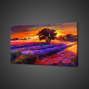 Campo-de-lavanda-Sunset-Paisaje-Cuadro-Lienzo-Impresion-Pared-Arte-Decoracion-Del-Hogar