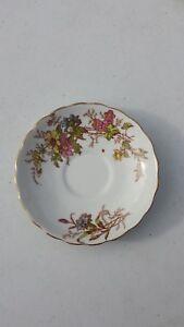 Vintage-Antique-Rosina-England-Saucer