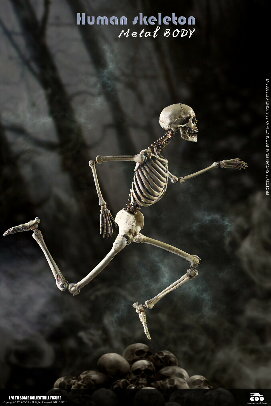 COOMODEL 1 6 NOBS011 The Human Skeleton Metal Body 12'' Movable Action Figure