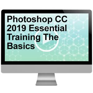 Photoshop-CC-2019-Essential-Training-The-Basics-Video-Training