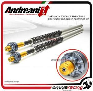 Andreani adjustable forks cartridge Ducati Hypermotard 821 13>15