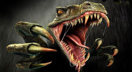 Dinosaur Iron On Transfers A4 A5 A6