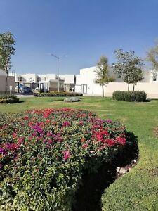 Casa de  renta en zona industrial S L P