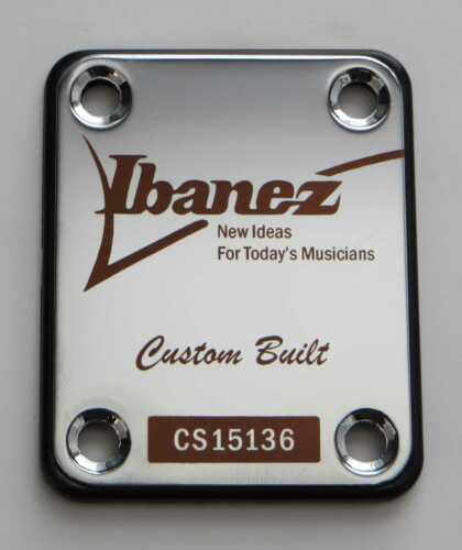 Engraved in your choice of 8 colors Ibanez Tribute Guitar Neck Plate