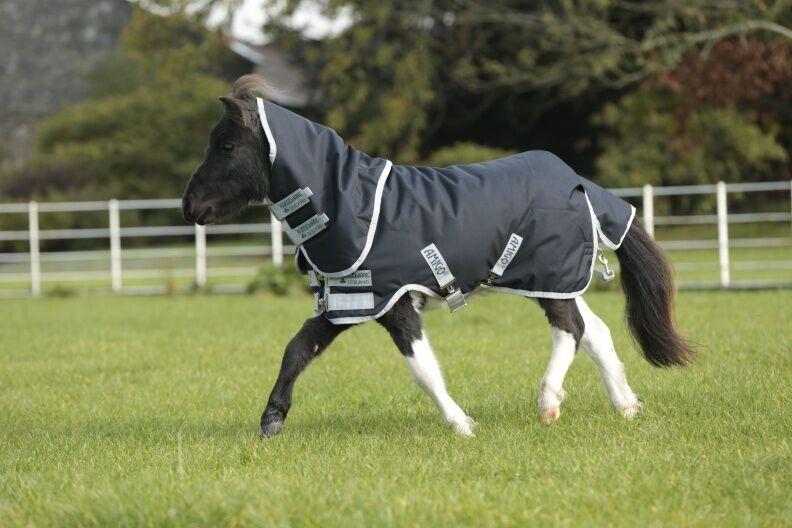 Horseware Amigo Hero 6 Medium Petite Plus Turnout Medium 6 - NEU für Miniponys 651831