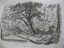 1834 Voyage autour du monde Urville 3 gravures double feuille Ogasawara Japon