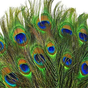 10Pcs Natural Peacock Tail Eyes Feathers 10-12 Inches Party Home DIY Decor Gift Crafts
