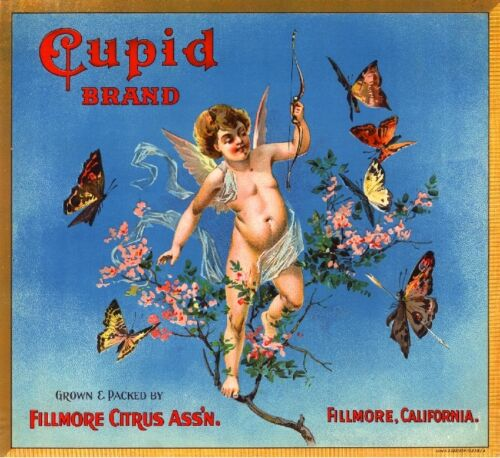 Fillmore Cupid #2 Valentine/'s Day Orange Citrus Fruit Crate Label Art Print