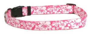 NEW-Pink-Dog-or-Cat-Collar-in-Hawaiian-Island-Floral-by-Yellow-Dog-Design