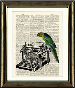 Old-Book-page-Art-Print-Parrot-and-Typewriter-Vintage-Dictionary-Page-Wall-Art