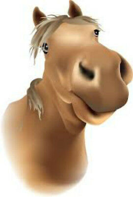 20 water slide nail art transfer happy brpwn horse 3/8 inch trending