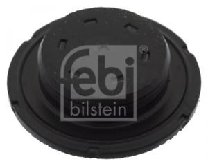 Froststopfen-fuer-Kurbelgehaeuse-FEBI-BILSTEIN-49353