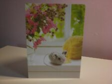 """Northern Exposure - """"Sympathy Card - For passing of a Special Pet"""