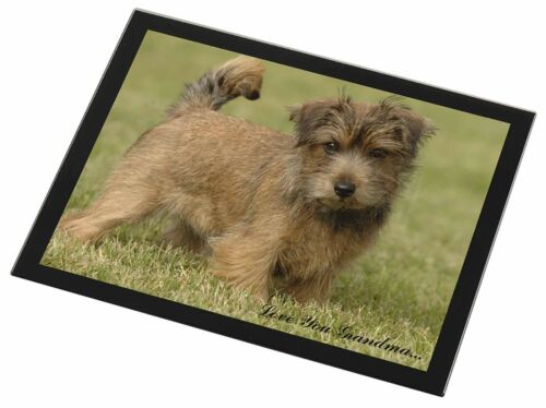 Norwich Norfolk Terrier 'Grandma' Black Rim Glass Placemat Animal T, ADNT1lygGP