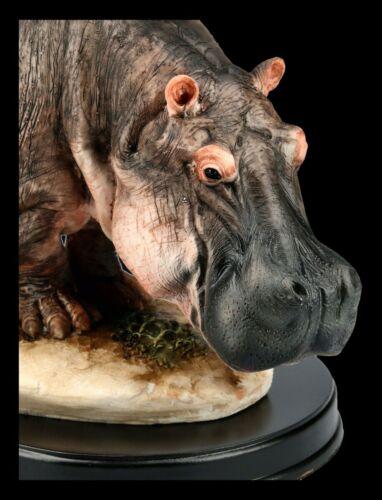 B 28,5 cm Dekofigur sculpture Statue HIPPOPOTAME figurine sur baseTierfigur