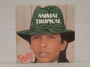 SHAKE-Animal-tropical-CA171-50009
