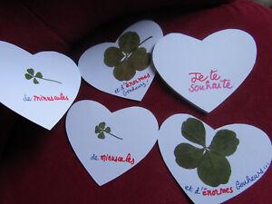 personnalisez-votre-bonheur-carte-avec-1-2-ou-3-trefle-a-4-feuilles-XXL-M-S