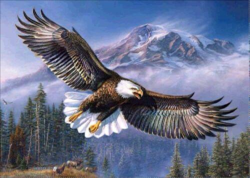Flying Eagle DIY 5D Full Drill Diamond Painting Cross Stitch Kits Mural Decor