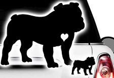 1x Auto Aufkleber Englische Französische Bulldogge French Bulldog Bulli Bully xx