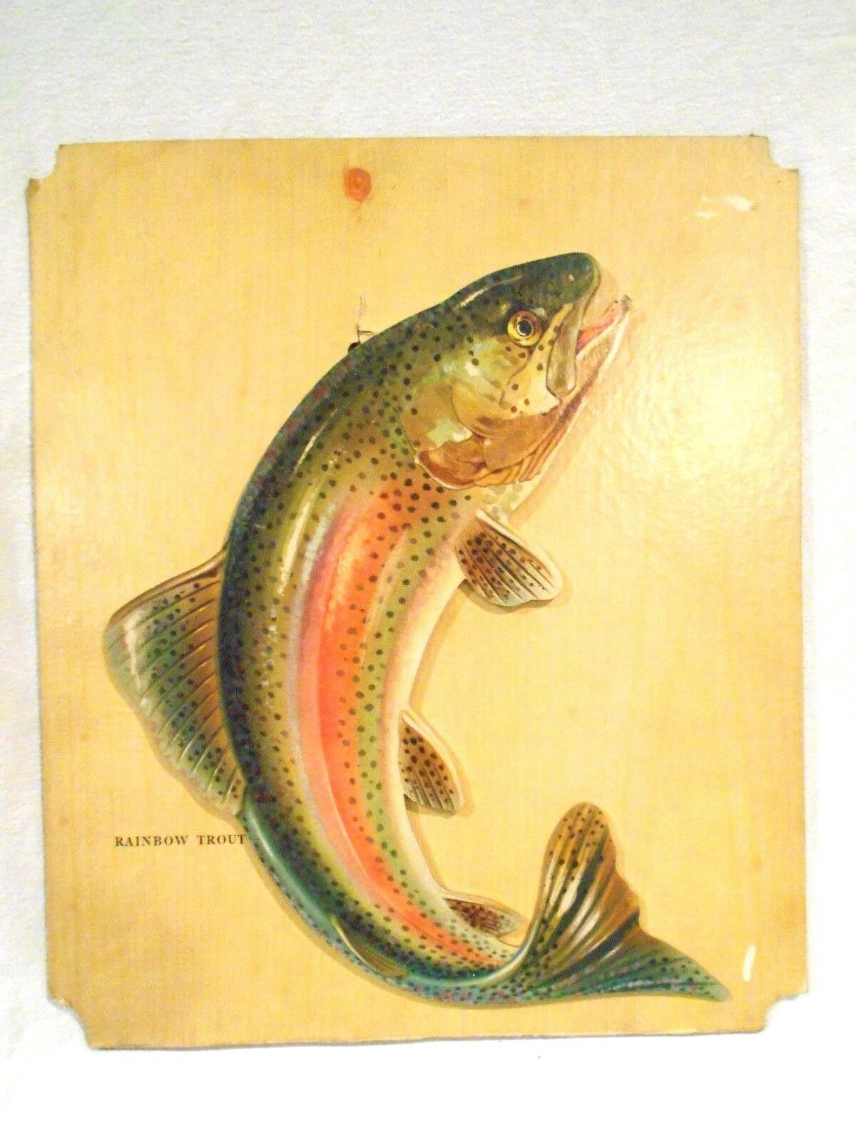 Vintage Rainbow Trout Counter Top Cardboard Wall Hanger Popout 15 x 13