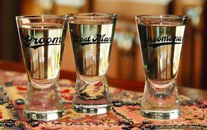 groomsman or groom shot glass wedding party gift ideas groomsmen