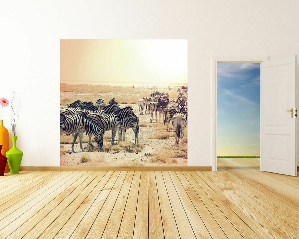 Fototapete - Zebras im Sonnenuntergang