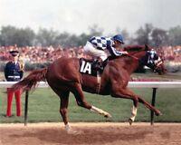 Secretariat (Ron Turcotte - Up) 1973 Kentucky Derby Winner - 8x10 Color Photo