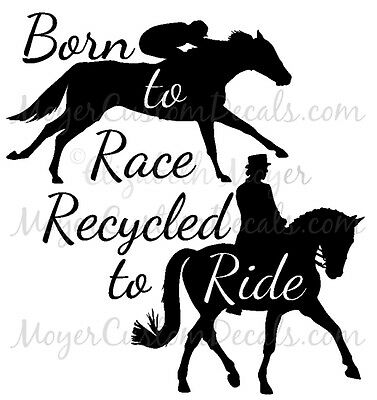 OTTB PERSONALIZED Crown Horse Decal CHOOSE COLOR Name and Tattoo Number