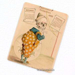 Antikamnia-1900-Calendar-5-Deco-Magnet-Antique-Illustration-Skeleton-Fridge