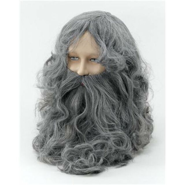 Dumbledore Style Grey Wizard Wig and Beard Set