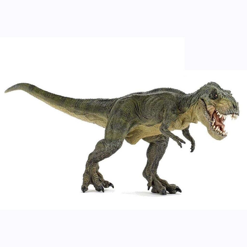 Rare Tyrannosaurus giant Dinosaurs modello  giocattolo scientific art cifra GIFT  nessun minimo