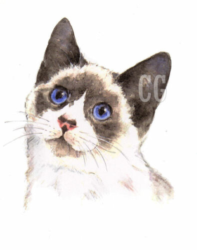 SNOWSHOE 3 Blank Cat greeting cards by Christine Groves