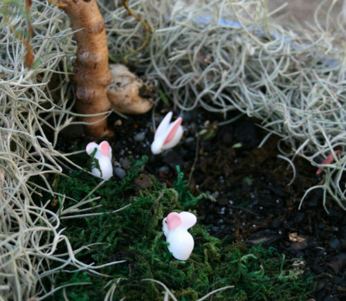 Miniatures 3 Resin Bunnies Rabbits Terrariums Fairies Garden Doll Houses Bonsai