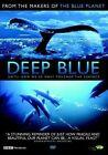 Deep Blue - DVD Optimum Releasing 5060034576280