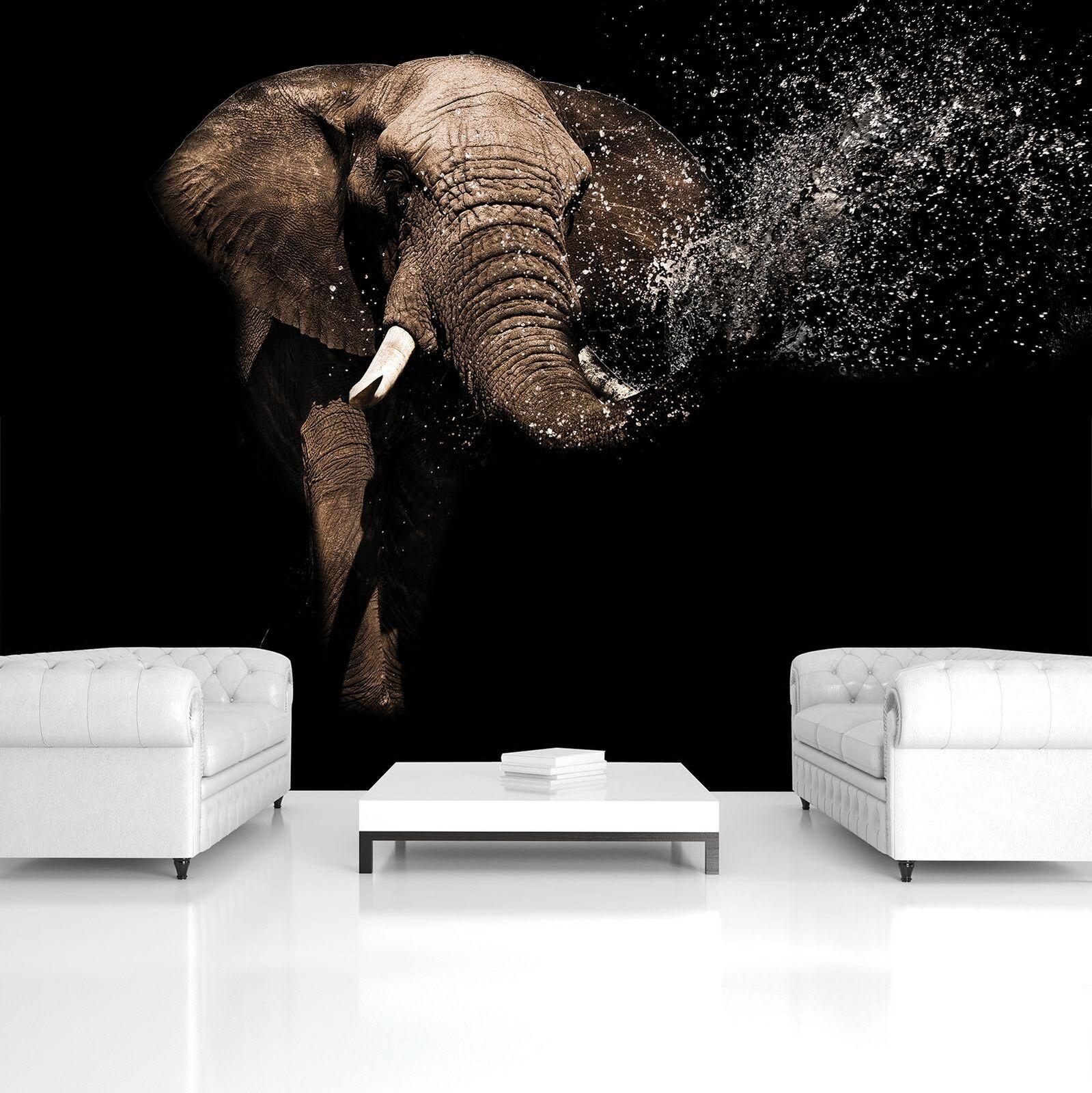 Vließ Fototapete Tapete Wandbild Elefant MS0911762_VEMVT