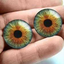 20mm Glass Eyes Taxidermy Hazel Green Human Doll Eyeballs Fantasy Halloween USA