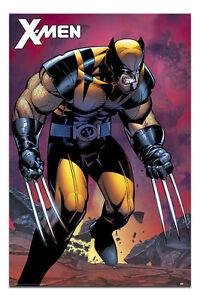 Marvel-X-Men-Wolverine-Berserker-Rage-Poster-New-Maxi-Size-36-x-24-Inch
