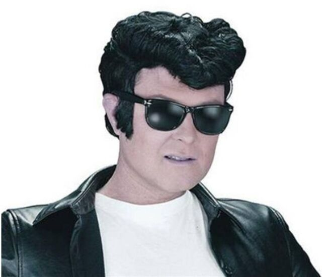 Danny Zuko Style T Birds Black Quiff Greaser Elvis 1950's Wig Fancy Dress P6003